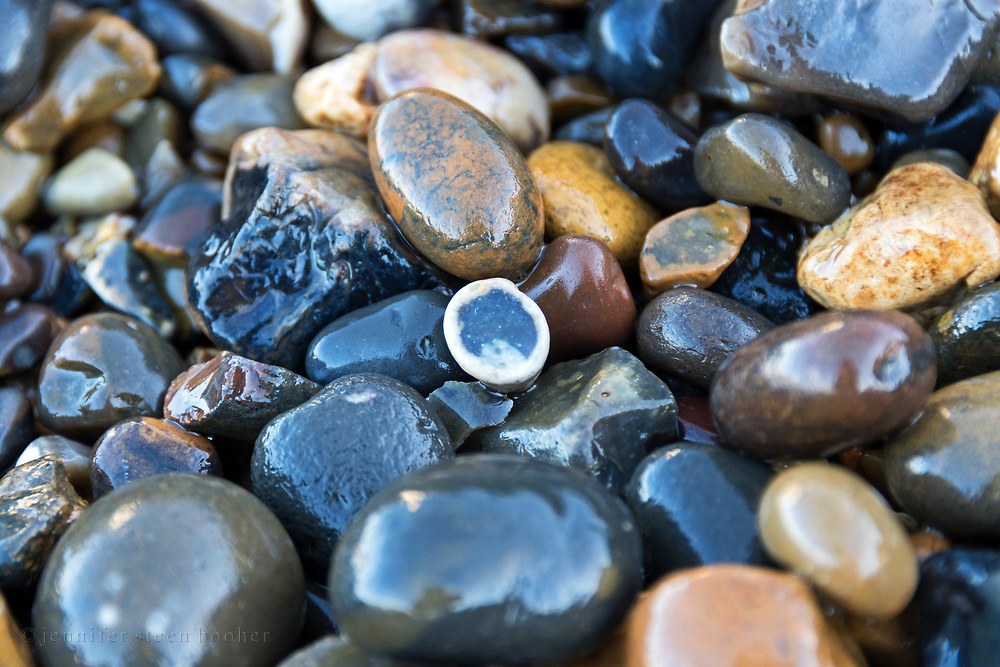 Flint nodule cracked in half, Thames River, London, UK