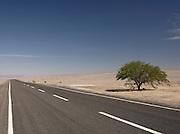 Road running throught the Atacama Desert, near San Pedro de Atacama, Chile