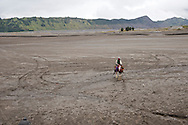 A cowboy tour guide waits for his clients on the dusty volcanic plain of Mt Bromo.