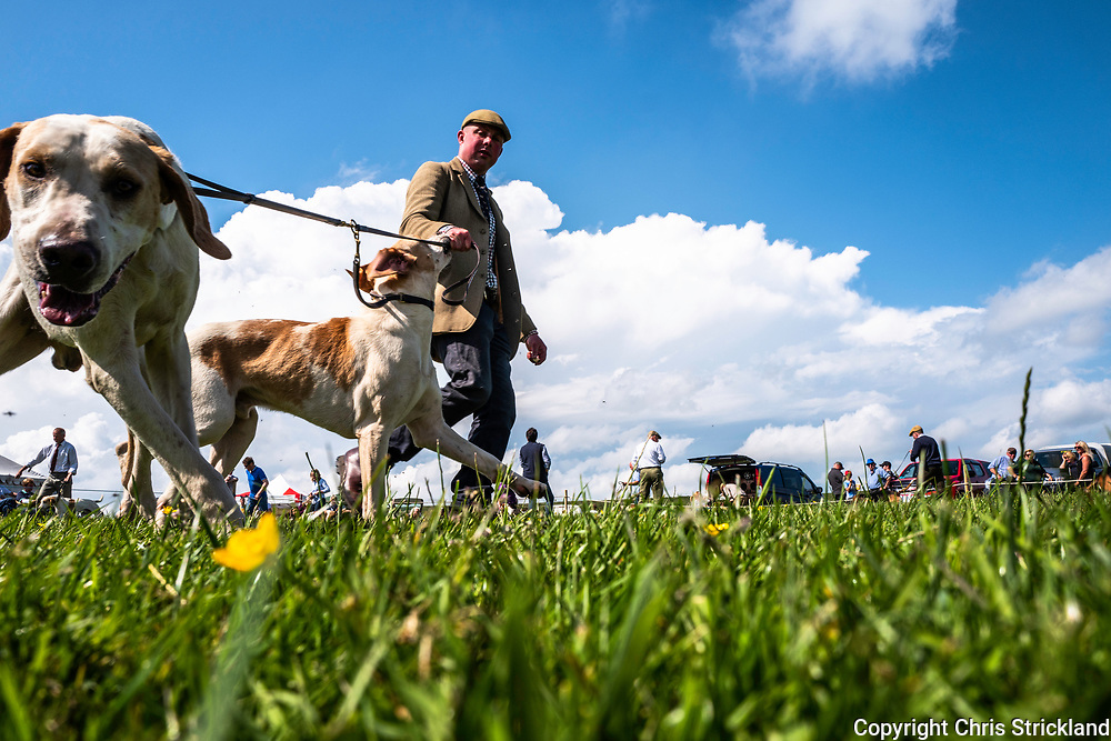 Steel Rigg, Haltwhistle, Northumberland, UK. 9th June 2018. The Roman Wall agricultural show in the north of England.