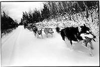 Woodrow leading the team, Skandia, Michigan, 1994