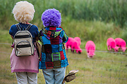 Pink sheep and coloured wigs - The 2017 Latitude Festival, Henham Park. Suffolk 14 July 2017