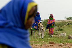 Kadija greets her neighbors near her village on the outskirts of downtown Barentu, Eritrea August 31, 2006.    (Photo by Ami Vitale)