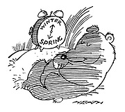 (A hibernating bear has his alarm clock set to 'Spring')