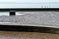 2021_07_21_Clevedon_Lake_SCH