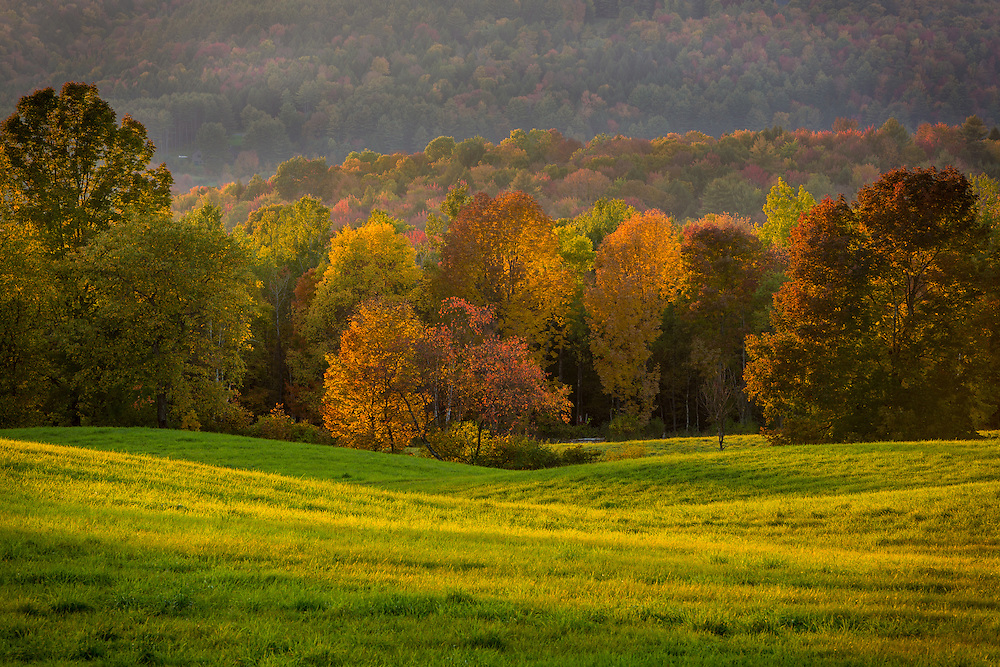 Autumn foliage and late day light, Sparrow Farm, E. Montpelier, VT