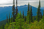 View from the summit<br /> Mount Revelstoke National Park<br /> British Columbia<br /> Canada
