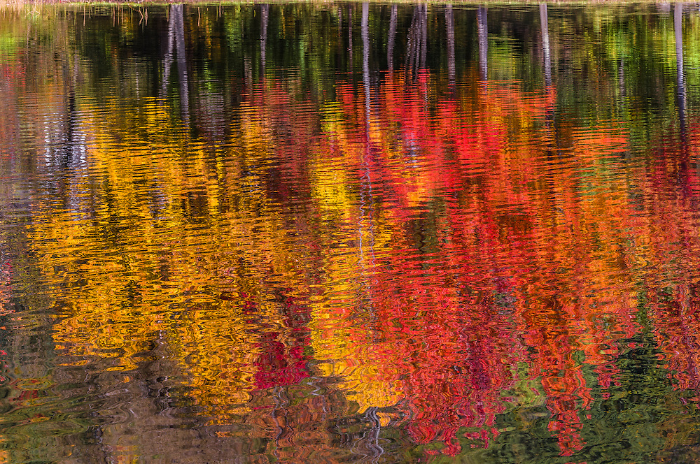 Impressionistic reflections of fall foliage trees in rippled water, Mascoma Lake, Lebanon, NH