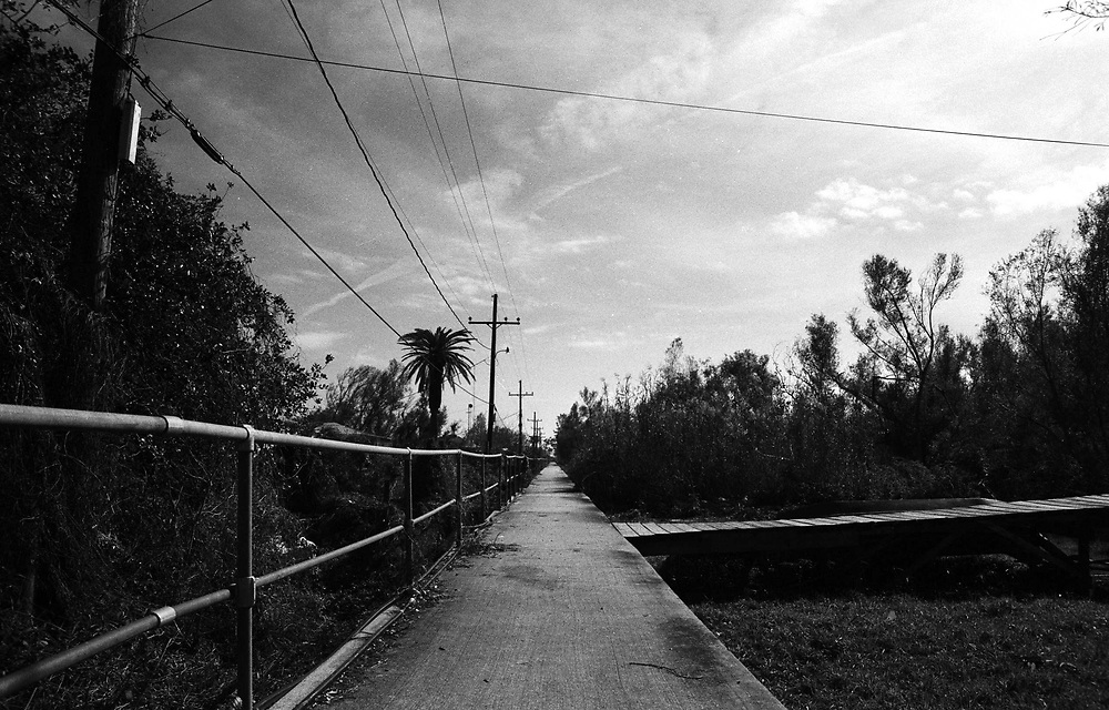 Pilottown Walkway, January 2005