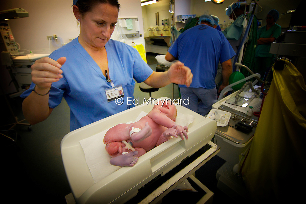 Midwife weighing baby boy immediately after being delivered by caesarean section, Kettering Hospital, Northamptonshire, UK.