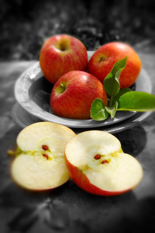 Fresh picked apples