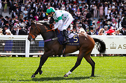Deia Glory riddden by Jockey P J McDonald goes to post for the Queen Mary Stakes