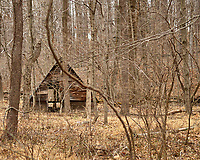 Abandoned wood building along Hollow road in Skillman, New Jersey. Image taken with a Nikon D200 camera and 17-55 mm f/2.8 lens.