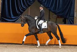 Gerrel Vink, NED, My Blue Horse Santiano<br /> Fotodag KWPN Hengstenkeuring 2021<br /> © Hippo Foto - Dirk Caremans<br /> 09/01/2021