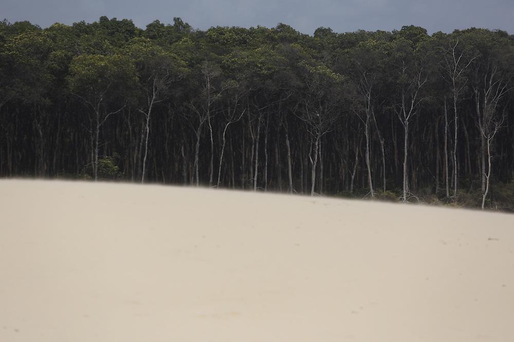 Barreirinhas_MA, Brasil.<br /> <br /> Parque Nacional dos Lencois Maranhenses em Barreirinhas, Maranhao. Na foto pequenos lencois.<br /> <br /> Lencois Maranhenses National Park in Barreirinhas, Maranhao. <br /> <br /> Foto: LEO DRUMOND / NITRO