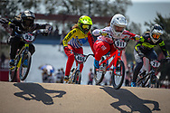 during practice at Round 9 of the 2019 UCI BMX Supercross World Cup in Santiago del Estero, Argentina