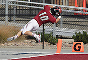 The Lindenwood Lynx football team hosted the Olivet Nazarene Tigers in an NAIA football game on Saturday afternoon. It was the homecoming game for the Lynx. Here Lindenwood's T.J. Onstott (10) made a spinning dive through the air and into the end zone to score a first half touchdown for the Lynx.