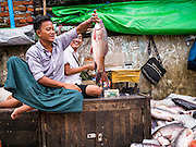 17 JUNE 2013 - YANGON, MYANMAR:  FIsh mongers in a large Yangon fish market. The market serves both domestic retail customers and wholesale international customers. With thousands of miles of riverine waterways and ocean coastline Myanmar has a large seafood and fishing industry.     PHOTO BY JACK KURTZ