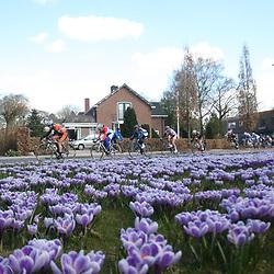 Energiewacht Tour stage 6 Groningen peloton in the city of Haren