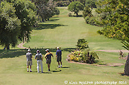 commission for the pines golf course whangarei heads.