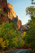 The road in Zion Canyon, Zion National Park, Utah.