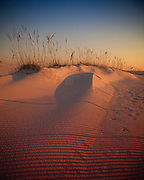 The setting sun shines through sea grasses and a fence creating linear shadows across sand dunes