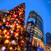 Christmas Tree at the Power and Light District