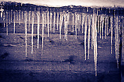 Icicles hanging from cabin eve, San Bernardino National Forest, California USA