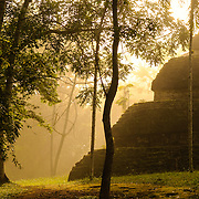 Morning mists shroud the jungle just after dawn, with the base of Temple 4, also known as the Temple of the Double Headed Serpent, at right in the Tikal Maya ruins in northern Guatemala, now enclosed in the Tikal National Park.
