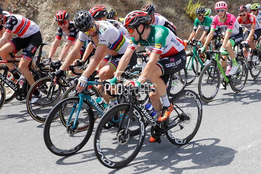 Elia Viviani (ITA - QuickStep - Floors), Peter Sagan (SVK - Bora - Hansgrohe) during the UCI World Tour, Tour of Spain (Vuelta) 2018, Stage 5, Granada - Roquetas de Mar 188,7 km in Spain, on August 29th, 2018 - Photo Luis Angel Gomez / BettiniPhoto / ProSportsImages / DPPI