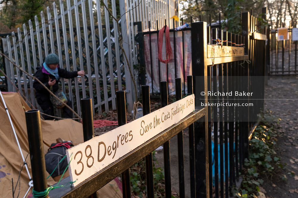 Activists' banners in Sydenham Hill Woods against the proposed felling of two 100+ year-old oak trees, threatened by Southwark Council because of their proximity to 'Pissarro's' footbridge whose renovation has been deemed necessary by the local authority, on 24th November 2020, in London, England. The Nunhead to Crystal Palace (High Level) railway once passed through the Wood and Impressionist artist Camille Pissarro (1830–1903) famously painted a railway landscape from the bridge in the 1870s. Sydenham Hill Wood forms part of the largest remaining tract of the old Great North Wood, a vast area of worked coppices and wooded commons that once stretched across south London. The habitat is home to more than 200 species of trees and plants as well as rare fungi, insects, birds and woodland mammals.