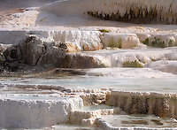 BRADLY J. BONER / NEWS&GUIDE .The upper terraces at Mammoth Hot Springs reflect the warm glow of morning light Friday in Yellowstone National Park.