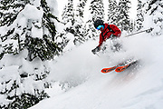 Canadian Mountain Holidays (CMH) Nomads private heliski tour 2020, Michael J Schreiner