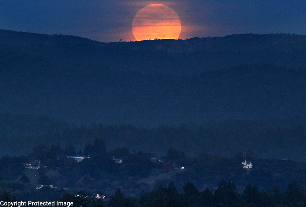 """A cloud-shrouded full """"Supermoon"""" rises over the summit and Santa Cruz County homes Monday night in this view from UC Santa Cruz. Supermoons happen when a full moon coincides with the moon's perigee, or a point in its orbit at which it is closest to Earth. This makes the moon appear up to 14 percent larger and 30 percent brighter than usual. The next supermoon will occur on Jan. 31 during a total lunar eclipse and as the second full moon in one month, it will also be a blue moon.  <br /> Photo by Shmuel Thaler <br /> shmuel_thaler@yahoo.com www.shmuelthaler.com"""