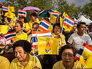 02 DECEMBER 2014 - BANGKOK, THAILAND: People watch the Trooping of the Colors parade on Sanam Luang in Bangkok. The Thai Royal Guards parade, also known as Trooping of the Colors, occurs every December 2 in celebration of the birthday of Bhumibol Adulyadej, the King of Thailand. The Royal Guards of the Royal Thai Armed Forces perform a military parade and pledge loyalty to the monarch. Historically, the venue has been the Royal Plaza in front of the Dusit Palace and the Ananta Samakhom Throne Hall. This year it was held on Sanam Luang in front of the Grand Palace.    PHOTO BY JACK KURTZ