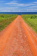 Red soil of gravel road