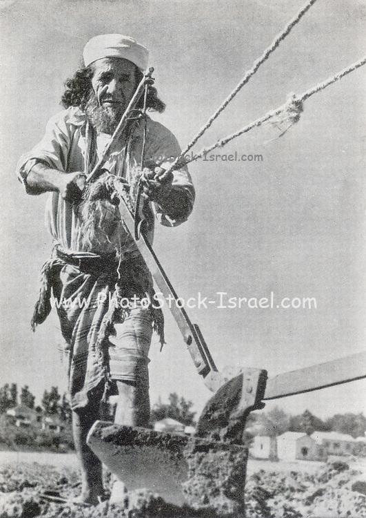 Oriental Jewish Pioneer (Chalutz) from Yemen, ploughs a field. Photographed in Palestine / Israel circa 1940