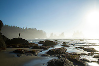 Shi Shi Beach in Olympic National Park, WA