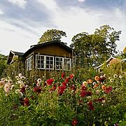 Tanto södra koloniområde på Södermalm i Stockholm.<br /> PHOTO © Bernt Lindgren