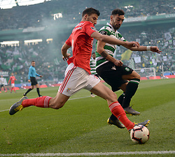 LISBON, Feb. 4, 2019  Ruben Dias (L) of Benfica vies with Bruno Fernandes of Sporting during the Portuguese League soccer match between SL Benfica and Sporting CP in Lisbon, Portugal, Feb. 3, 2019. Benfica won 4-2. (Credit Image: © Xinhua via ZUMA Wire)