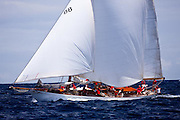 Astor sailing in the Cannon Race at the Antigua Classic Yacht Regatta.
