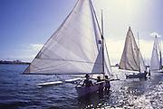Outrigger Sailing Canoes, tahiti, French Polynesia<br />