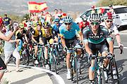 Rafal Majka (POL - Bora - Hansgrohe) , during the UCI World Tour, Tour of Spain (Vuelta) 2018, Stage 9, Talavera de la Reina - La Covatilla 200,8 km in Spain, on September 3rd, 2018 - Photo Luis Angel Gomez / BettiniPhoto / ProSportsImages / DPPI