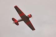 Harvard in flight at Warbirds Over the West.