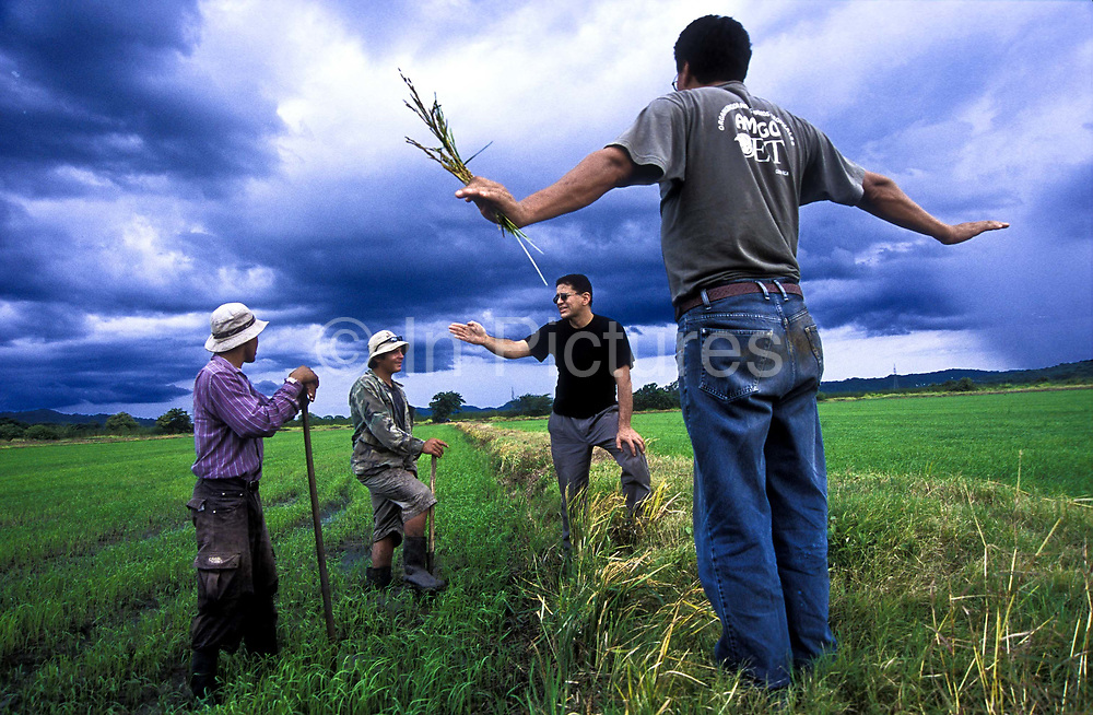 An agronomer discusses planting techniques to workers in organic rice fields, Costa Rica