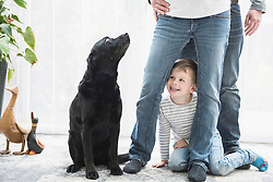 Little boy with parents and pet dog at home, Munich, Bavaria, Germany
