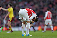 Olivier Giroud of Arsenal reacts in pain after being tackled. The Emirates FA cup, 4th round match, Arsenal v Burnley at the Emirates Stadium in London on Saturday 30th January 2016.<br /> pic by John Patrick Fletcher, Andrew Orchard sports photography.