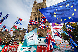 © Licensed to London News Pictures. 28/10/2019. London, UK. Demonstrators with pro-Brexit and European Union flags outside Parliament. The EU has granted a flexible extension to the Brexit deadline until 31 January 2020. MPs will vote today on whether to hold a general election in December.  Photo credit: Rob Pinney/LNP