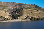 douro river and steep vineyards quinta nova douro portugal