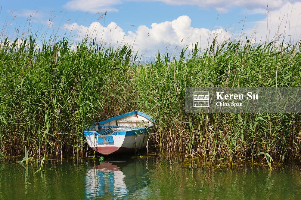 Canoe and reeds on Lake Ohrid, Republic of Macedonia